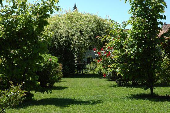 Un giardino senza roditori due soluzioni ecologiche for Soluzioni giardino