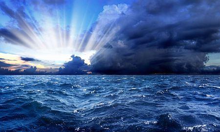 """Le """"radici del mare"""", un patrimonio in declino"""