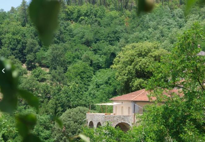 Vacanze ecosostenibili? Con Nature.house per ogni pernottamento viene piantato un albero!
