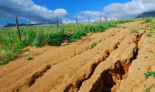 Erosione del suolo: cause, conseguenze e possibili rimedi