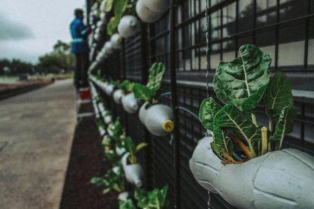 Il riciclo della plastica può salvare l'ambiente